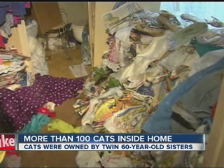 Texas twins lived with more than 100 cats in hom