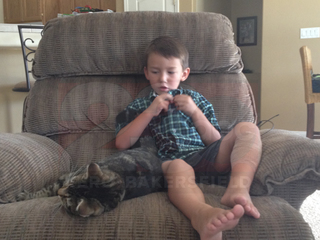 VIDEO: Cat saves boy from attack in Bakersfield