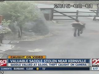 Valuable saddle stolen near Kernville