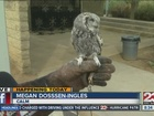 CALM Zoo hosts annual Boo-at-the-Zoo