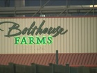 One arrested in Bolthouse Farms bomb threat