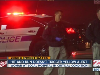 Yellow Alert not issued in hit and run
