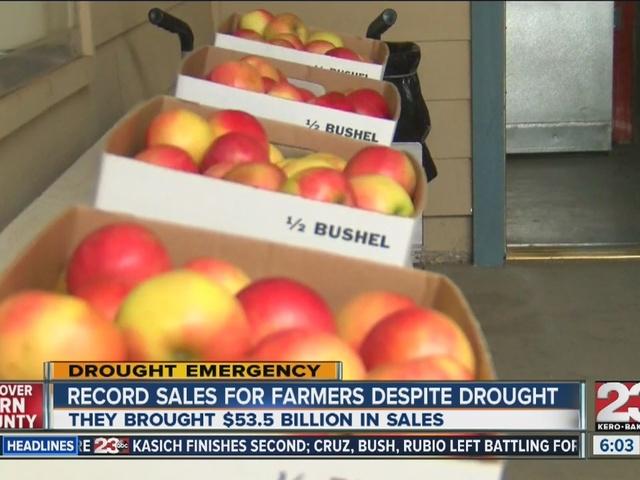 Record sales for farmers despite drought