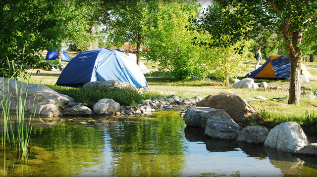 A guide to the best Spring camping spots in Central California -  turnto23.com Bakersfield, CA