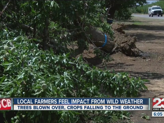Local farmers feel impact from wild weather