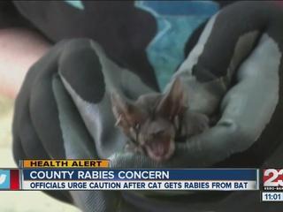 Rabies incident involving bats in Kern County