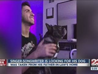 Popular songwriter's dog missing in Bakersfield