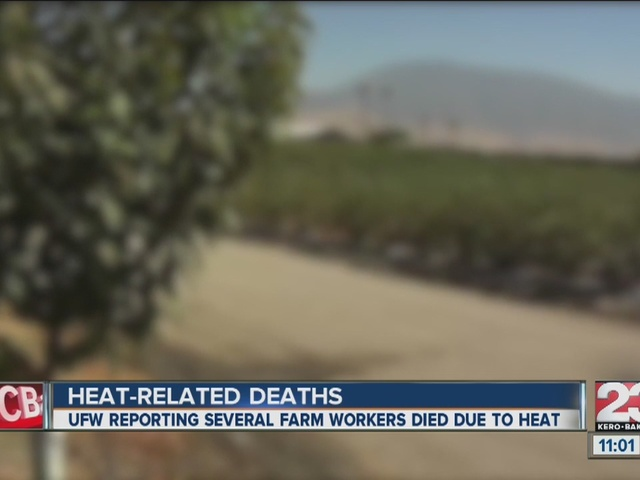 Several grape farmworkers dead, possibly from heat