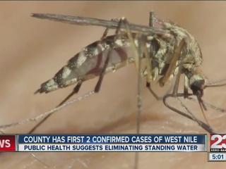 West nile virus confirmed in Taft