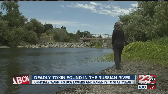 California officials warn of algae toxin in river
