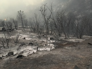 Cedar Fire burns near Glennville, 5% contained
