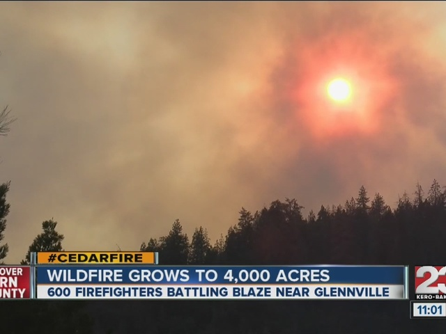 Cedar Fire grows to 4,000 acres, 5% contained