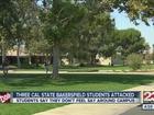 CSUB's top cop: We couldn't arrest the suspect
