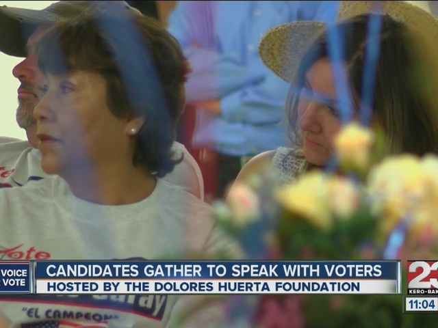 Candidates gather in Lamont to reach out to voters