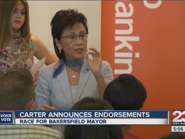 Kyle Carter announces endorsements, Karen Goh responds