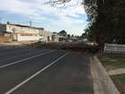 Alta Vista Dr. clear after tree falls in roadway