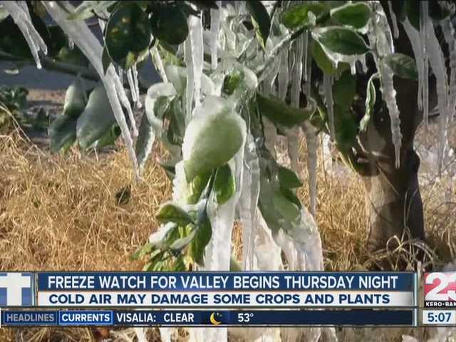 Freeze Watch Goes into Effect for Valley Thursday Night
