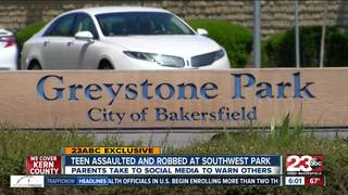 Teen assaulted and robbed at Greystone Park