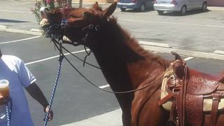 A woman from Oildale only travels by horse