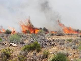 Fire in Bodfish stays at 206 acres