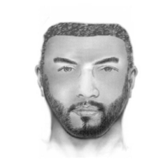 KCSO releases sketch of sexual assault suspect