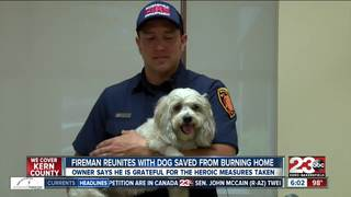 2-year-old dog reunites with hero firefighter