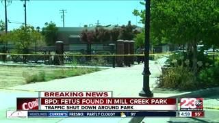 BPD pulls deceased fetus out of Mill Creek Park