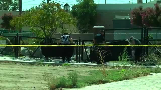 Bakersfield Police said a fetus was found at Mill Creek Park in Central…
