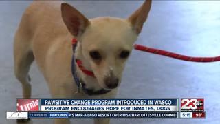 'Pawsitive Change' program heads to Wasco Prison