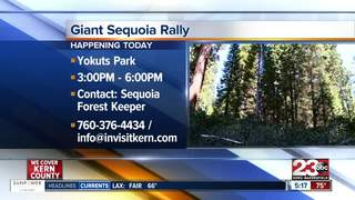 Rally to support Giant Sequoia National Monument