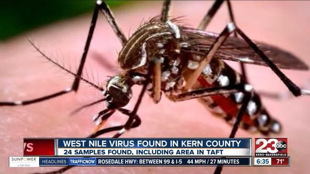 West Nile Virus found in Kern County
