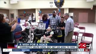 Local boy's wish for a voice comes true