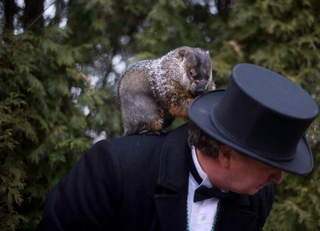 groundhog_day_20121213101425_640_480_1363898103694-10920.JPG