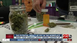 How marijuana could impact your employment