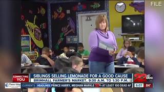 Profits for a good cause on Lemonade Day