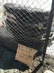 Small fire ignites in Firestone Grill lot