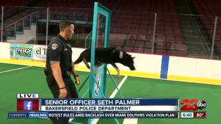 Four-legged K9 officers showcase their skills