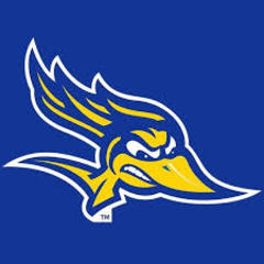 CSUB Volleyball ranks 3rd in preseason WAC poll