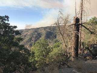 The Call Fire burns in Lower Kern Canyon