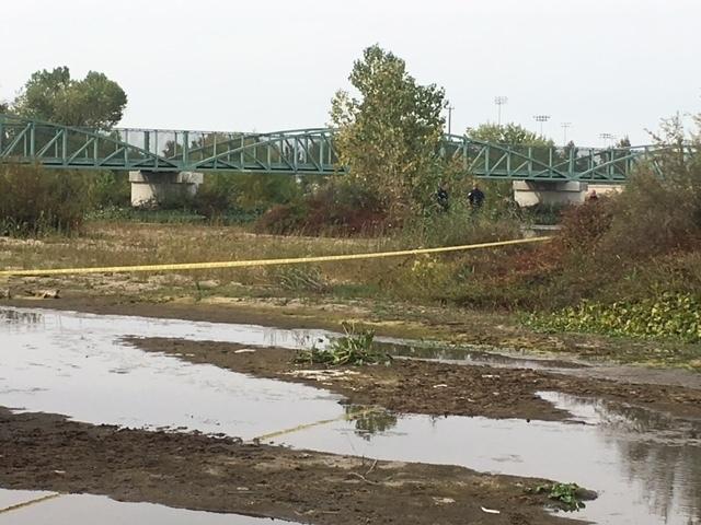 Coroner identifies body found in 2017
