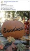 Banducci's Family Pumpkin Patch to open Oct. 1st