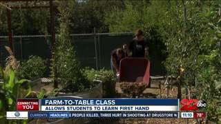 Farm-to-table class at Rosedale Middle School