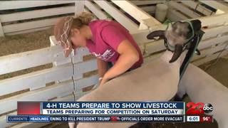 Animals preparing to take center stage at Fair