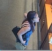 BPD searching for theft suspects