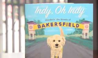 'Indy, Oh Indy' book released
