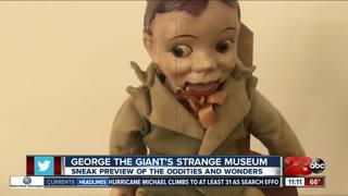 George The Giant's Strange Museum