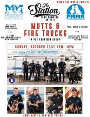 Mutts and Fire Trucks Pet Adoption