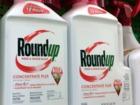 Judge cuts Monsanto award down to $78 million