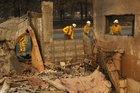 California fire survivor followed fox to survive
