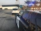 Bus driver killed after crash